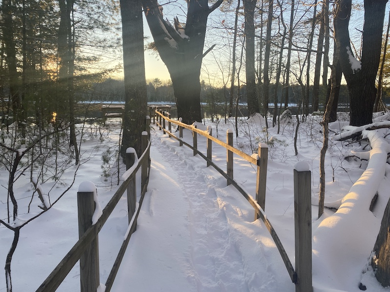 bridle-path-winter2