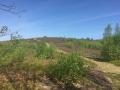 camden hills800a