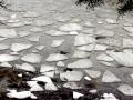 iceshoal800
