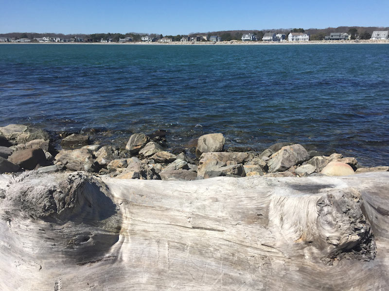 Timber Point Biddeford Maine By Foot